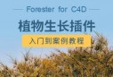 Forester  for  C4D植物生长插件完全教学