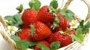 小提篮里的草莓和花