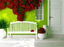长椅与墙壁上的红色鲜花