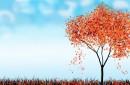 卡通枫树背景图片