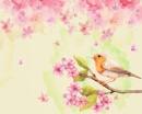水彩花鸟画背景