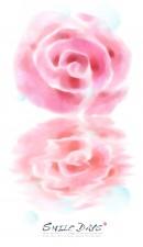 梦幻玫瑰花背景
