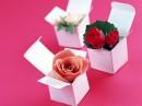 三个小盒子里的玫瑰花