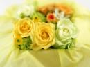 盒子里的玫瑰花