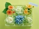 透明塑料盒里摆放的花