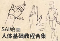 SAI绘画人体基础教程合集
