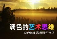 DaVinci达芬奇高级调色技巧教程