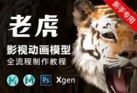 影视动画动物模型《老虎》全流程制作教程【实时答疑】