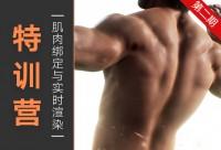 虛擬角色-ZivaVFX肌肉綁定&UE4實時渲染特訓營【第二期】