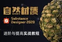 Substance Designer 《自然材质》 进阶与提高实战教学【写实材质】