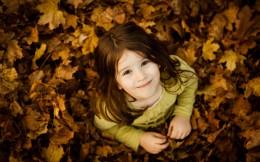 金黄的落叶