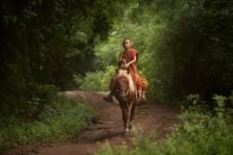 马背上的少年僧