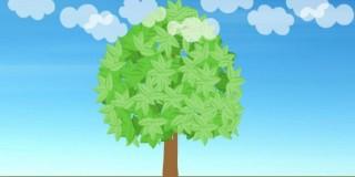 教育成长频道片头动画制作