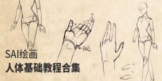 SAI繪畫人體基礎教程合集