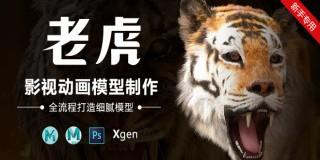 影視動畫動物模型《老虎》全流程制作教程