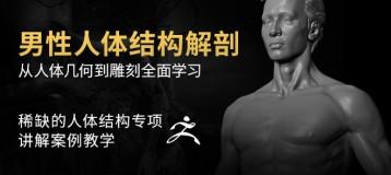 《男性人体结构解剖》 —— 骨骼,肌肉,人体从讲解到雕刻全系列教程