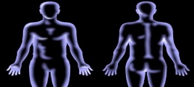 男女人体基础教学2