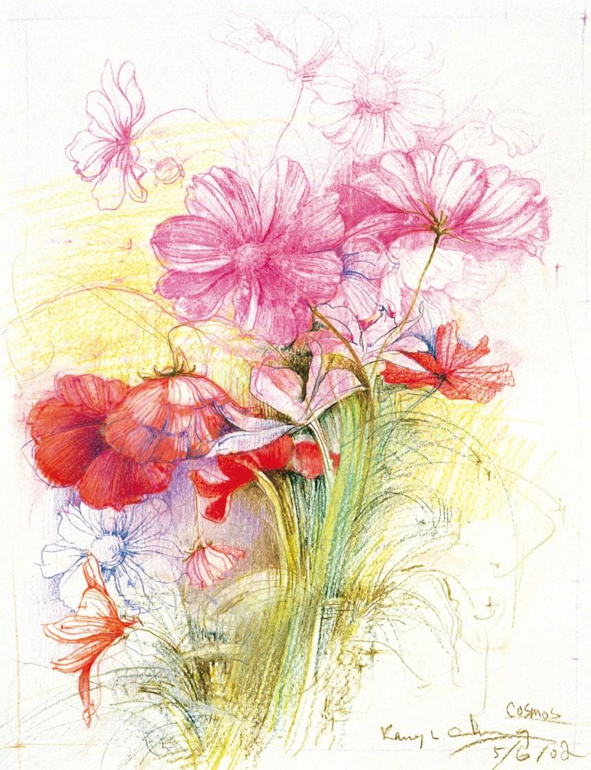 创意花卉铅笔画图片