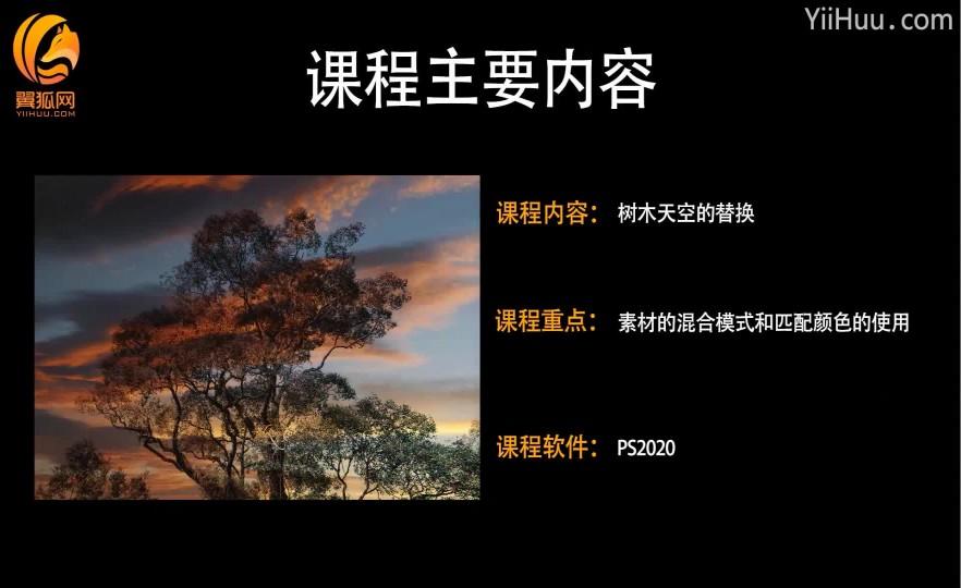 15.3树木天空的替换