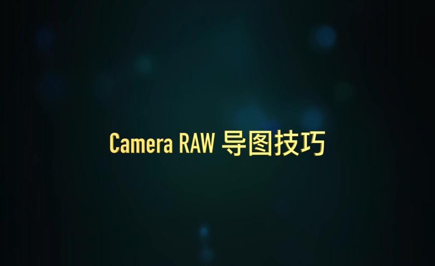 课时5:raw导图技巧