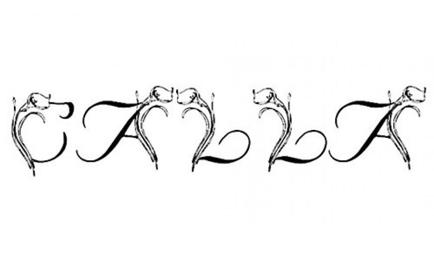 30个漂亮的花图案字体014