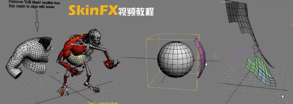 SkinFX视频教程