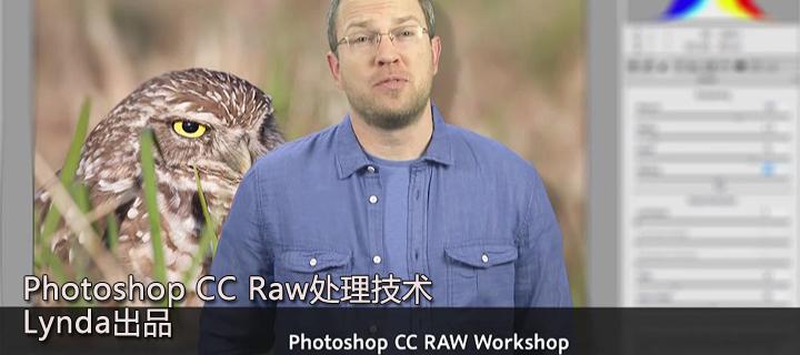 Photoshop CC Raw处理技术教程(Lynda出品)