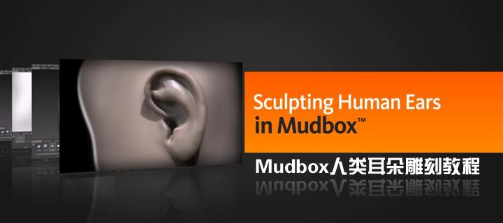 Mudbox人类耳朵雕刻教程(Digital Tutors出品)