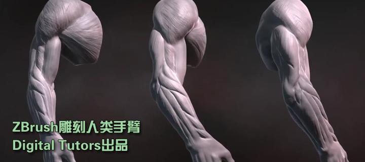 ZBrush雕刻人体手臂(Digital Tutors)