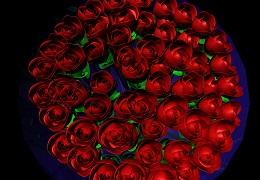 玫瑰花模型建模教程