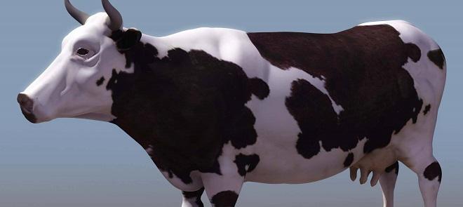 3dmax2014建模纹理贴图教程