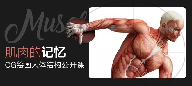 肌肉的记忆(名动漫)